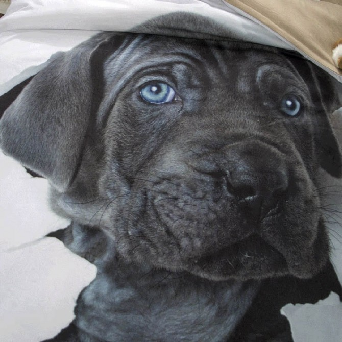 Dog Take Me Home Duvet Cover Set