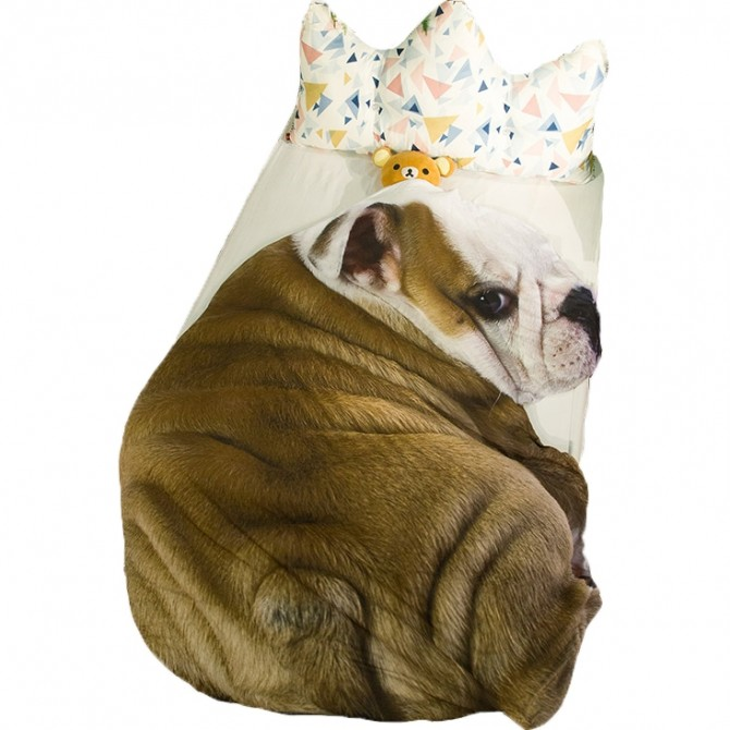 Cute Bulldog Throw Blanket