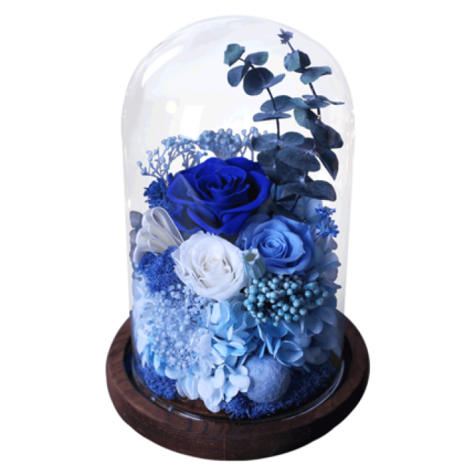 Glass Dome Roses Blue