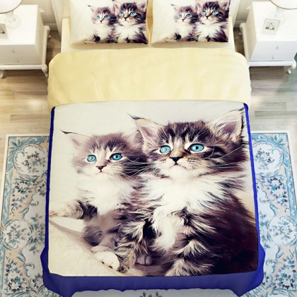 Kitten Cat Duvet Cover Set