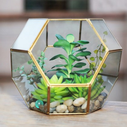 Geometric Glass Terrarium D