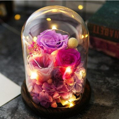 Glass Dome Roses / String Fairy Light Gift- Beauty
