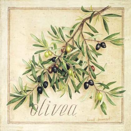 Olivea Canvas Print