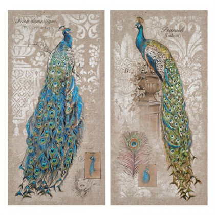 Vintage Peacock Canvas Print, Set of 2