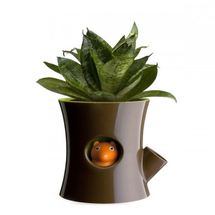 Squirrel Plant Pot