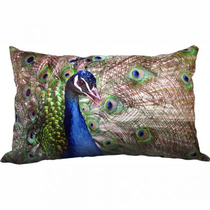 Prince Peacock Cushion Cover