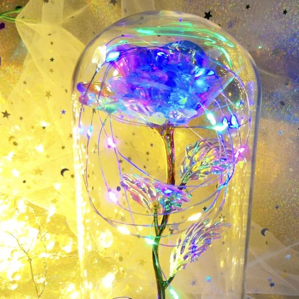 Rainbow Rose in Glass Dome. Fairy String Light