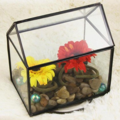 Geometric Glass Terrarium G
