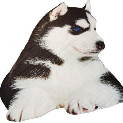 Cute Husky Throw Blanket