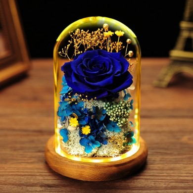 Glass Dome Roses / String Fairy Light Gift- Blue