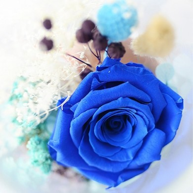 Blue Eternal Rose in Glass Colors Changing Night Light